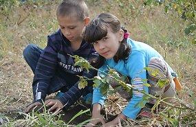ukraina-sojapogenikud-69845189