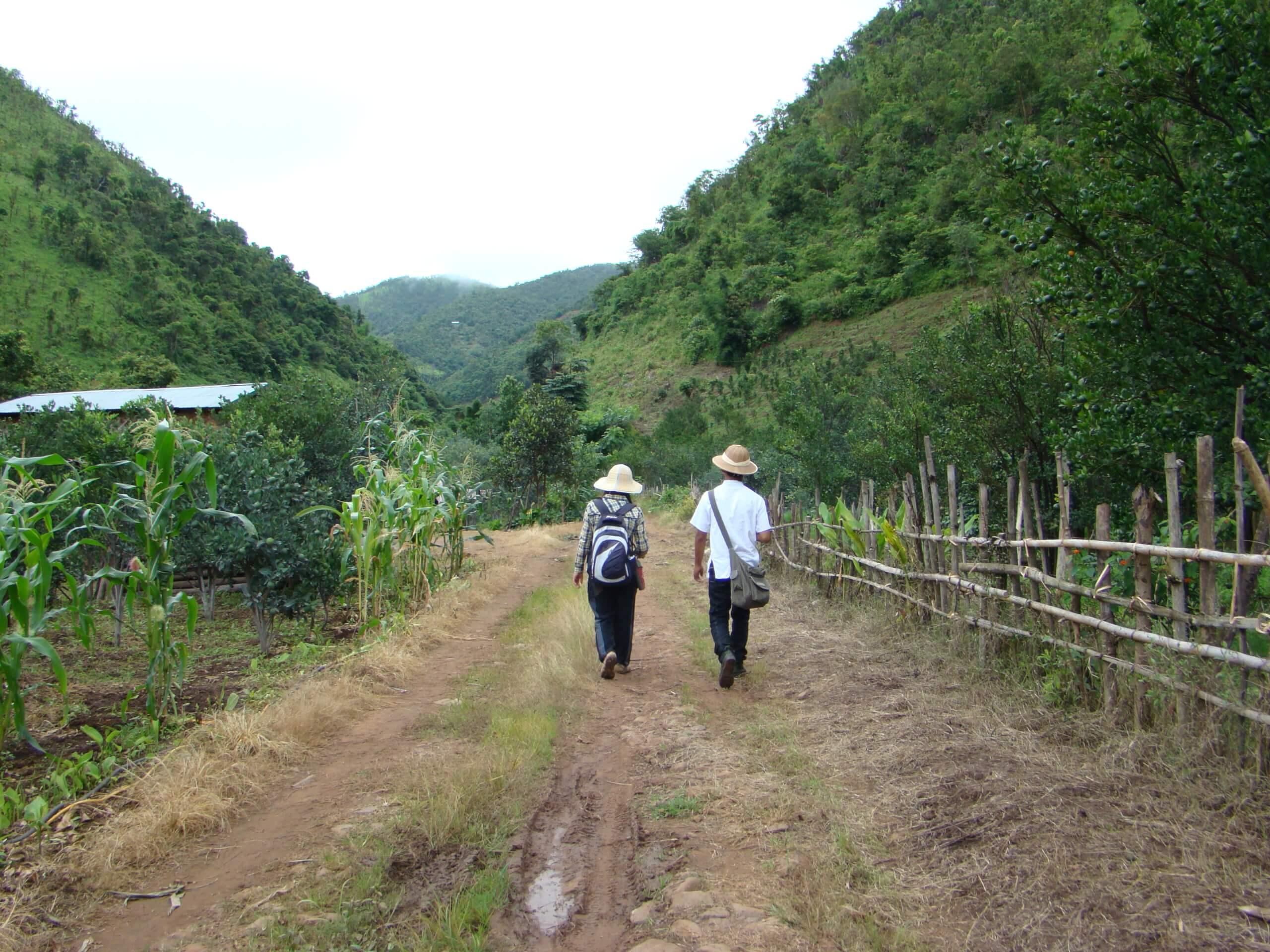 Birmablogi-teemägikülla